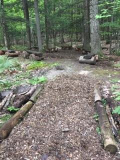 School trails1